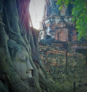Same Buddha, different angle!