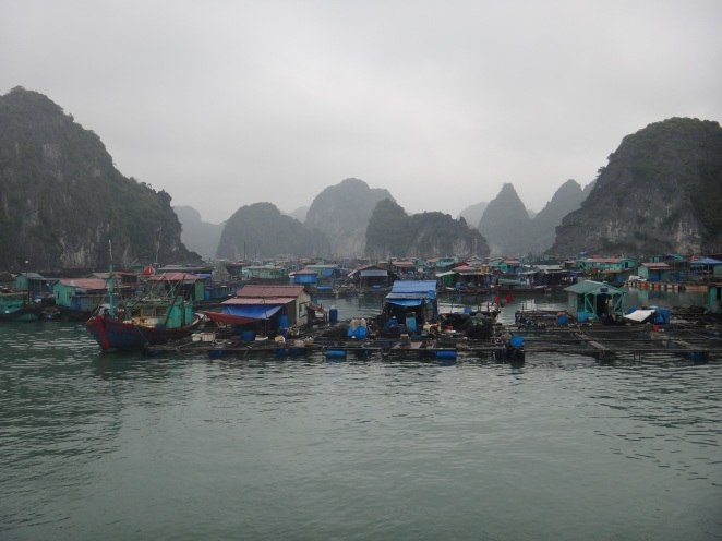 First glimpses of the floating fishing village in the shadows of many karsts